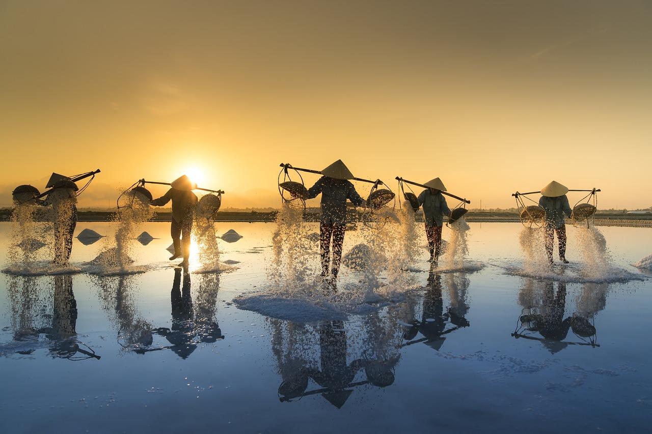 Wie Lange Dauert Visum Für Vietnam